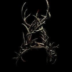 """Something is hungry, vicious… and maybe Canadian in new """"Antlers"""" trailer"""