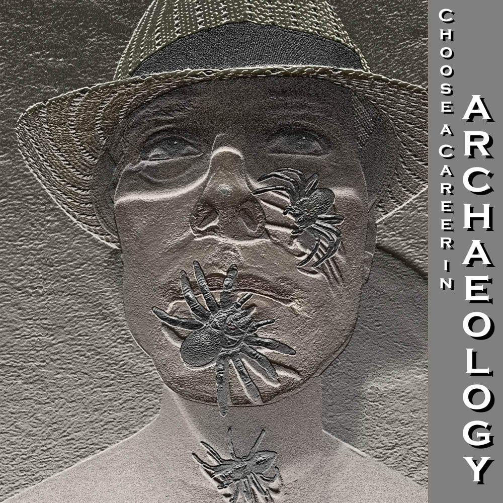 archaeology career poster