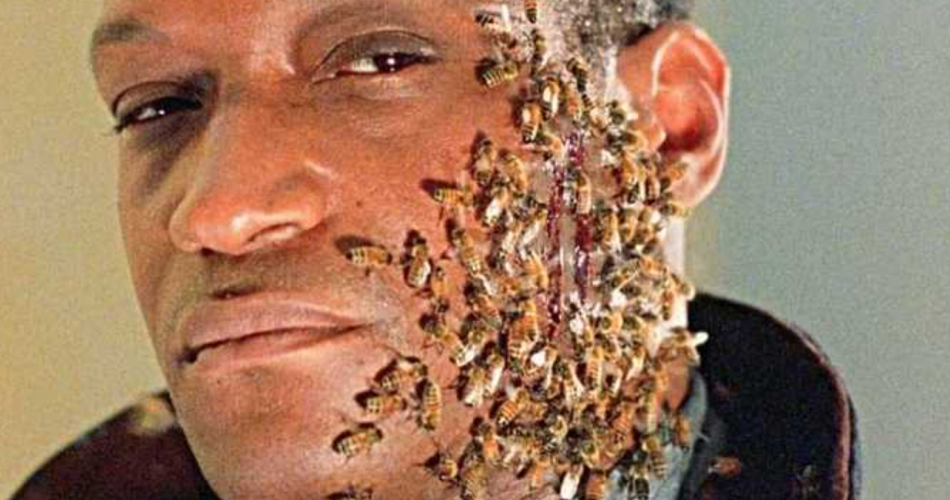 A man's face half way covered in bees - the Candyman